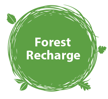 Forest Recharge