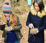 forest kindergarten training cpd