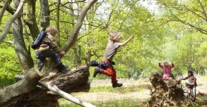 cropped-child-jumping-copy1.jpg