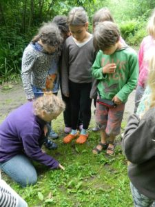 Forest School Sessions