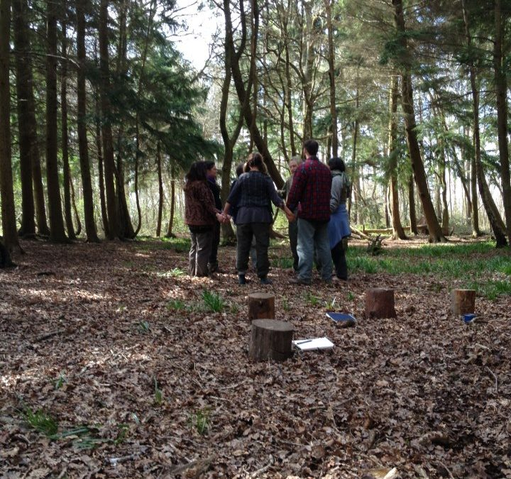 """""""I'm a Forest School Leader!"""" – Forest School Training"""