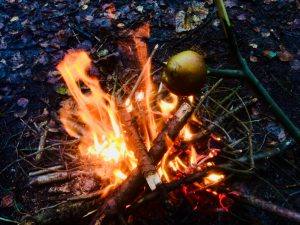 Toffee apples on the fire! Our Teenage Woodland Programme