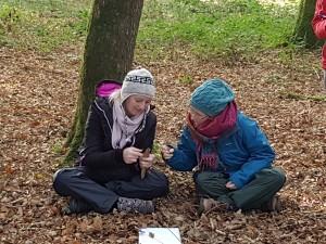 Forest School Training Ireland