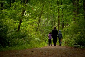 Nature Pedagogy, Well-being & Therapeutic training in East Sussex this year