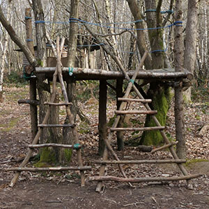 Play Structures Course