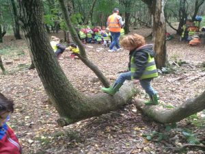 Outdoor Classroom Day 2018