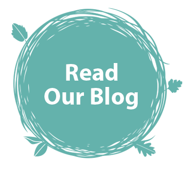 Read Blog Post