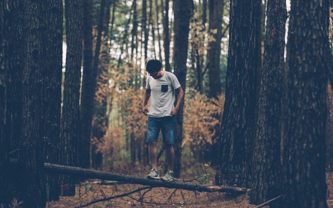 Working with Nature to Support our Mental Health